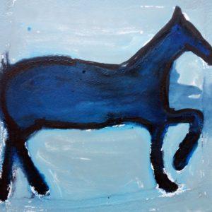 cavallo-1
